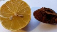 Sivilceli Cilt Sorununa Limon ve Kahve Maskesi