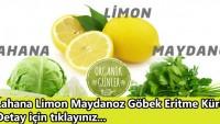 Lahana Limon Maydanoz Göbek Eritme Kürü